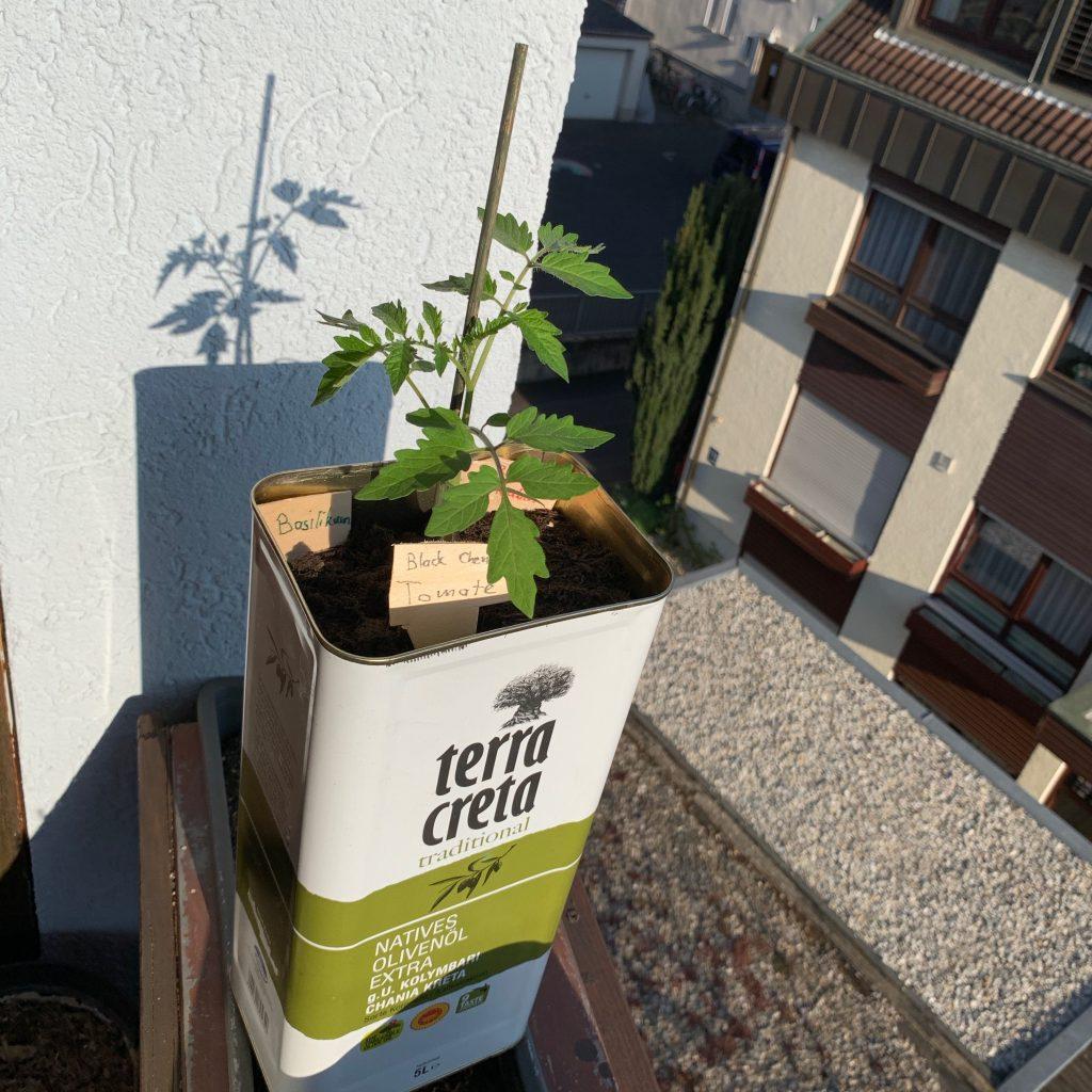 Olivenölkanister Upcycling
